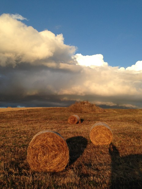 Irpinia - Rotoloni al Tramonto