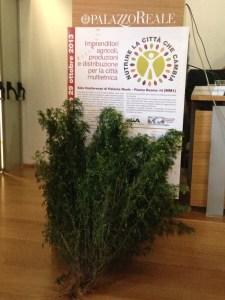 Nutrire la Città che Cambia - Huacathai