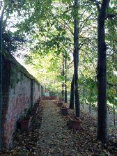 La via d'ingresso - Stati Generali Parco Agricolo Sud Milano