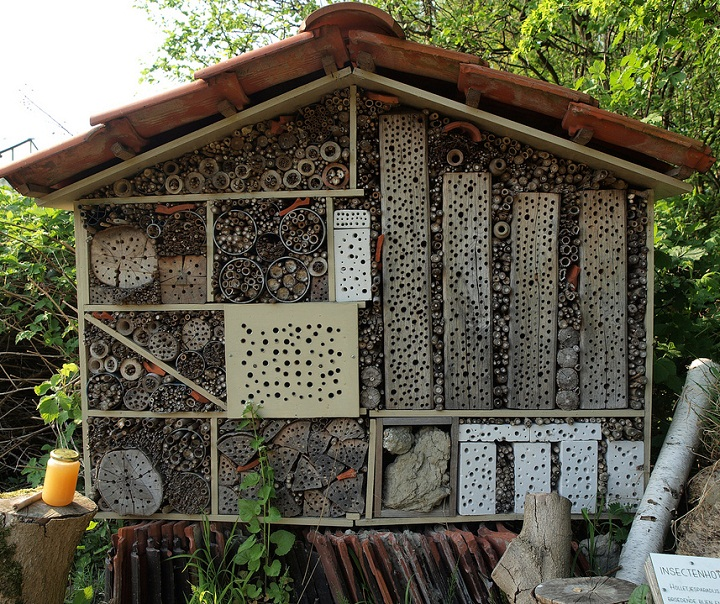 31 insect hotel