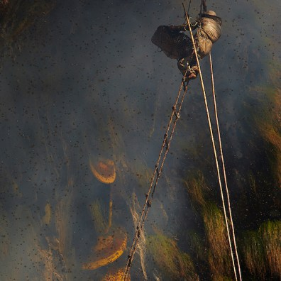 Honey hunters of Nepal.