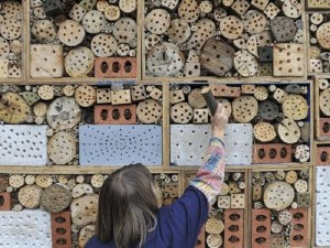 Bee Hotel Sevenoaks Kent Uk 15