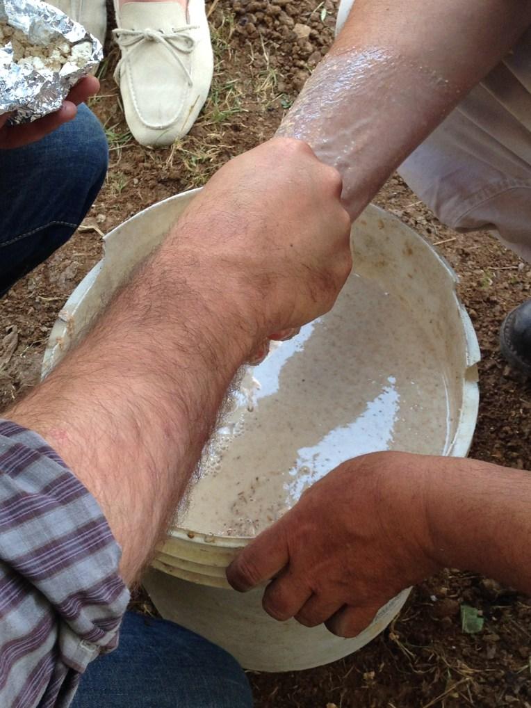 Bokashi - Quinto Strato Crusca nella Pasta Madre