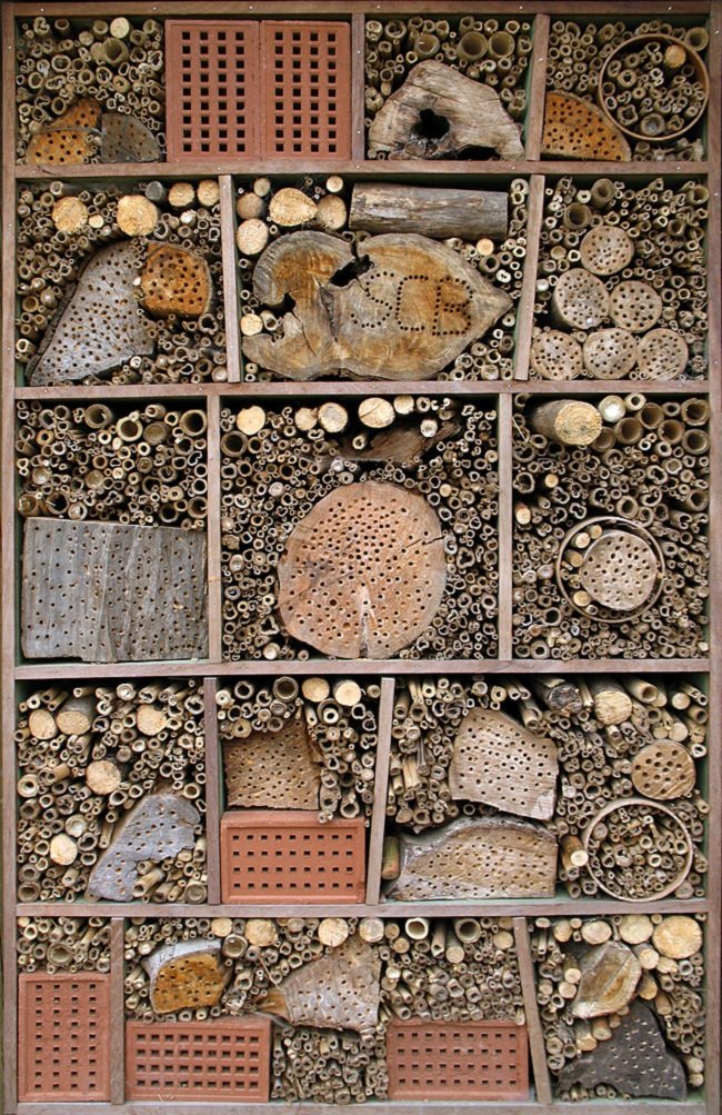Durrell Wildlife Conservation Trust insect hotel 34
