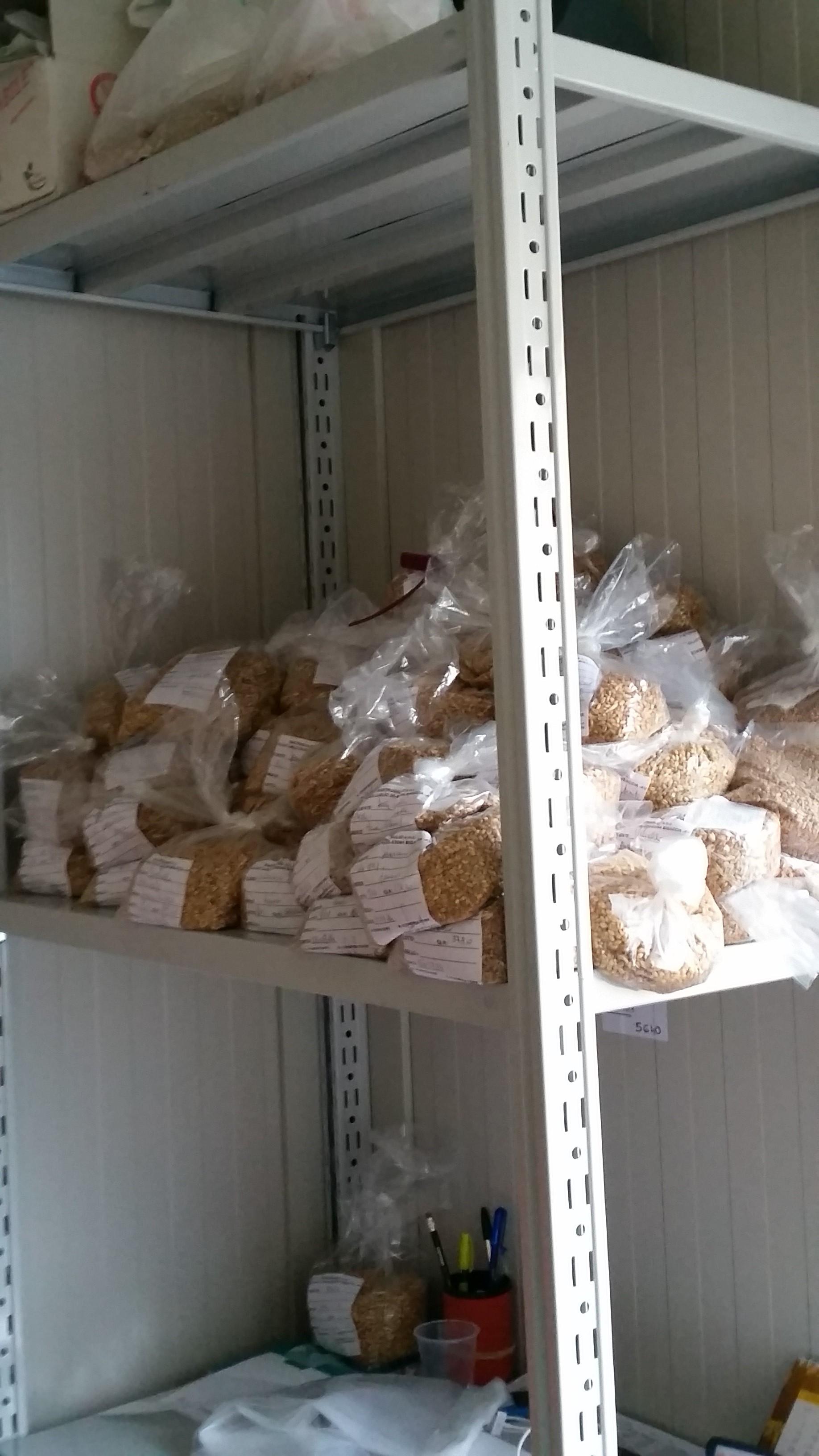 Consorzio Formicoso Alta Irpinia - Il Deposito della Copia di Controllo