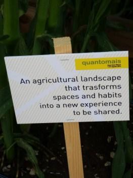 Quantomais - Agricultural Landscape