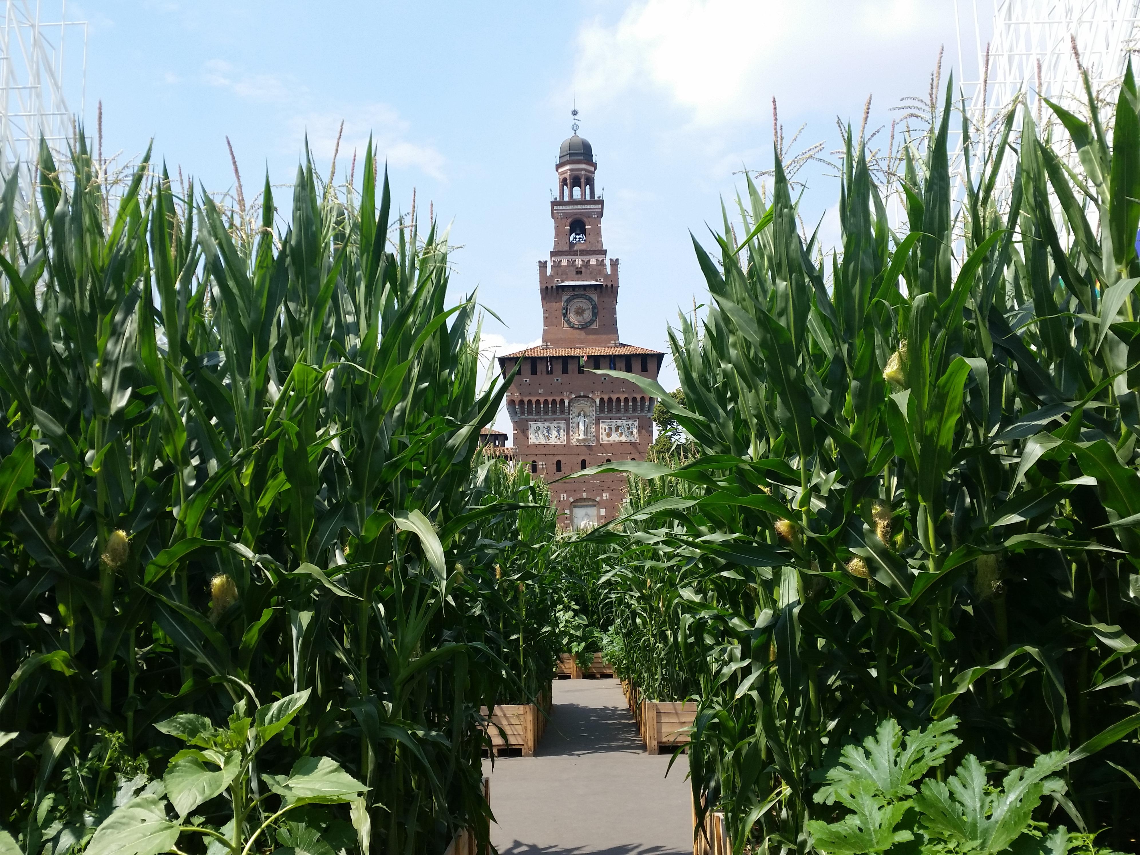 Quantomais - Castello Sforzesco