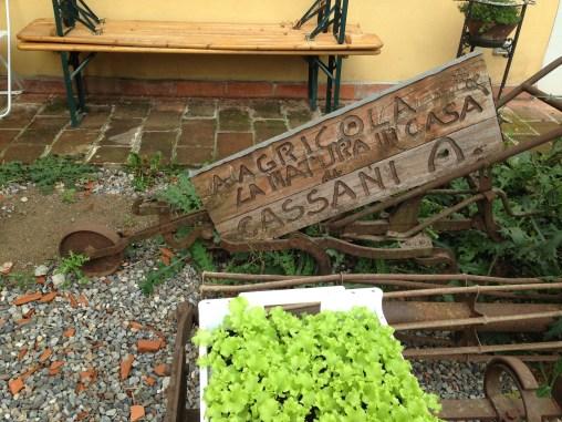 Agricola Cassani - Strumenti Agricoli Storici