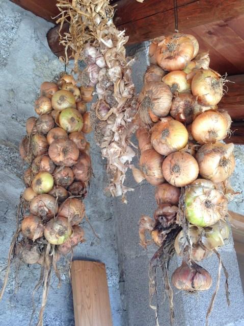Agriturismo Prestello - Casa Cipolle
