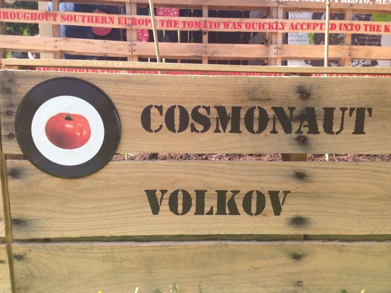 Exponymi - Pomodori Cosmonaut Volkov