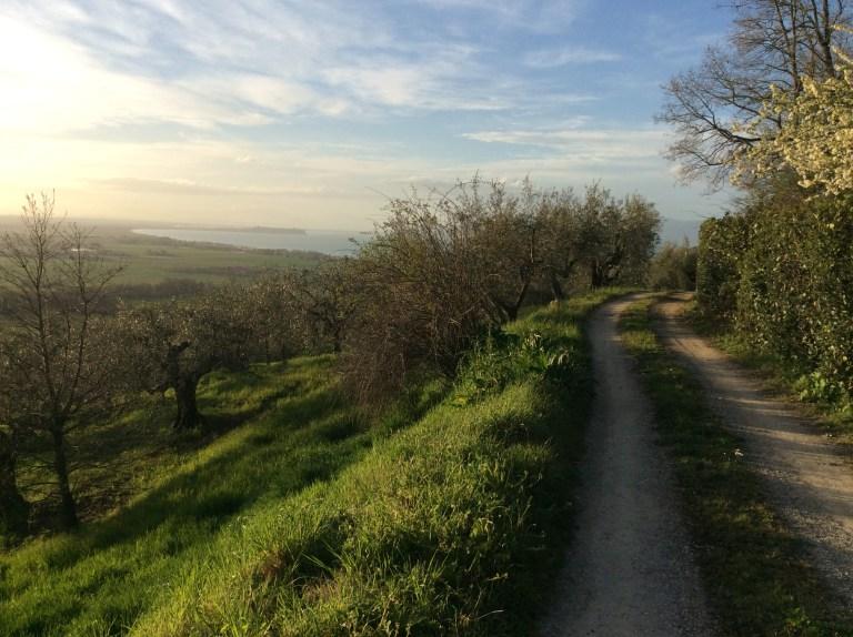 Monococco In Umbria - Visioni di Primavera