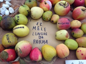Mandillo dei Semi 2015 - Le Mele Lunghe di Parma