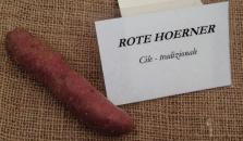 Mandillo dei Semi 2015 - Patata Rote Hoerner