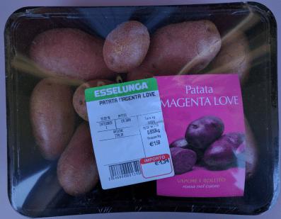 patata-magenta-love