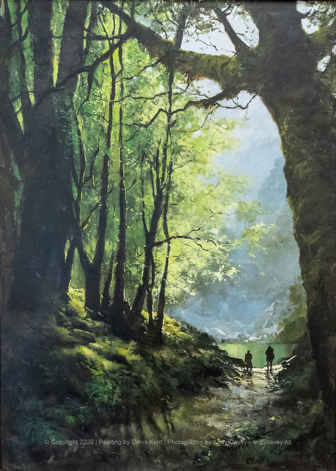 Sunlit Mountain Bush Track - a painting by Denis Kent