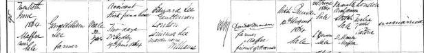 1864 Death certificate George Williams LEE