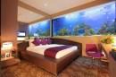 aquarium chambre 4