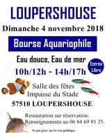 2018-11-04-bourse-aquariophile-loupershouse
