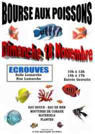 2018-11-18-bourse-aux-poissons-ecrouves