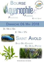 6 mai Saint AVOLD