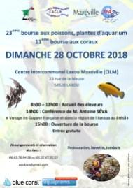 Bourse Champs le boeuf-LAXOU 28 octobre 2018
