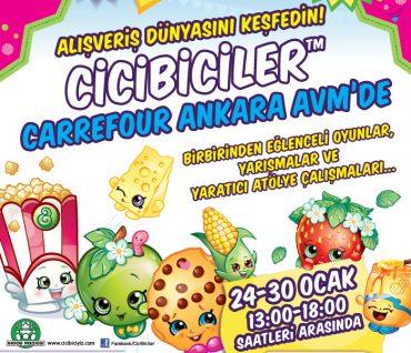 Shopkins Carrefour Ankara AVM