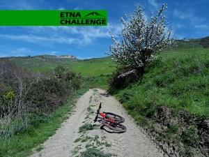 etna-challenge_album_FB_06.jpg