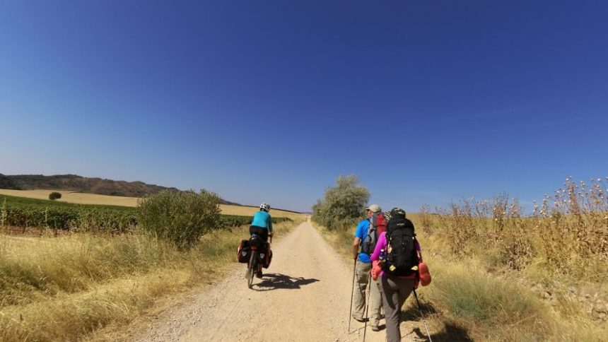 Guided Cycling Tours