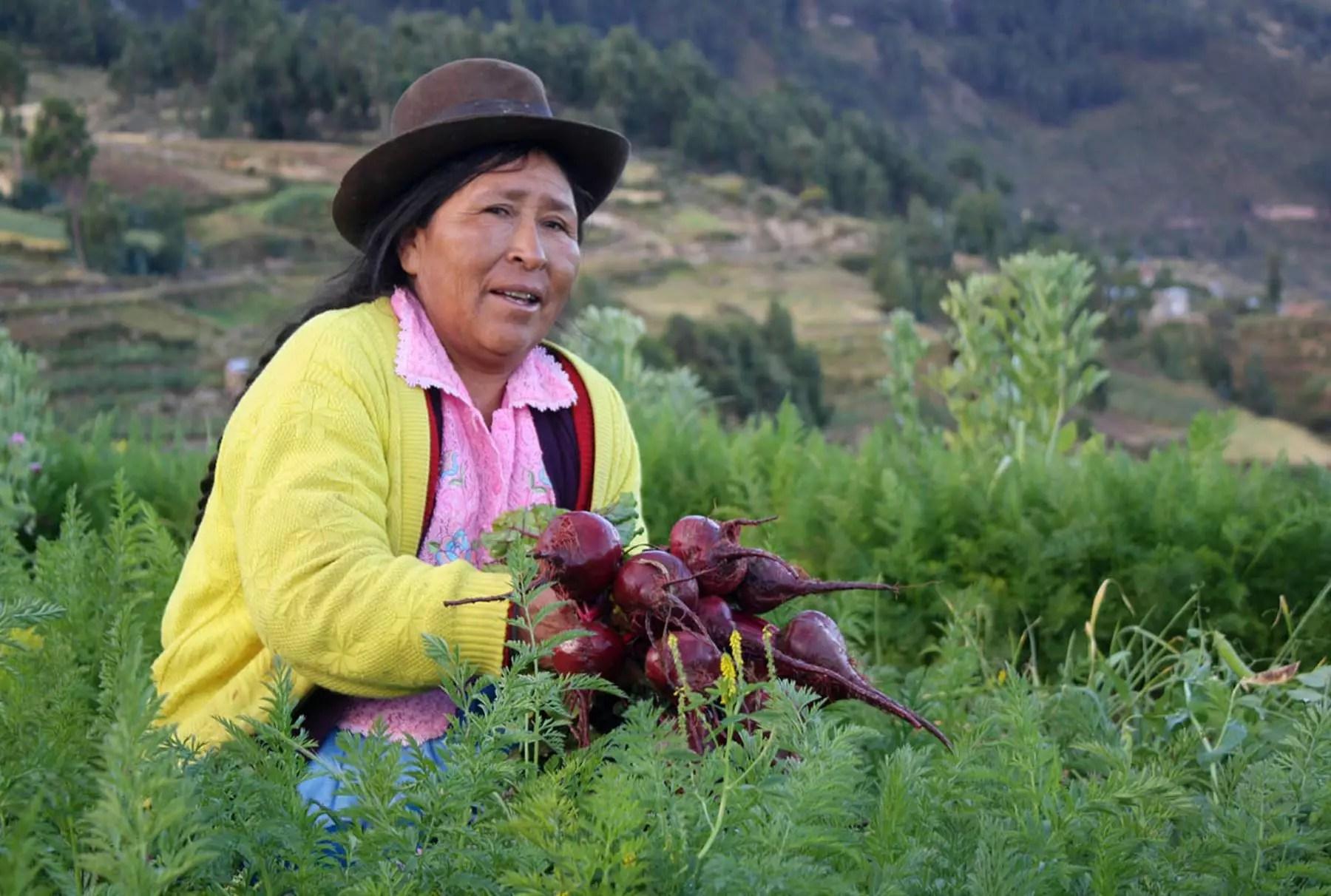 Bolívia quer produzir toda a comida consumida pelo país até 2020