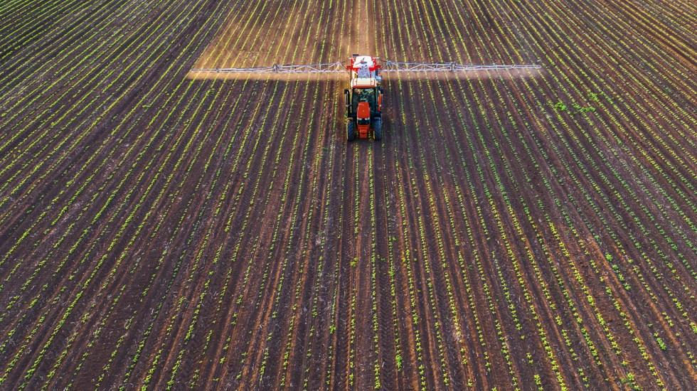 ONU denuncia 'mito' de que pesticidas são necessários para alimentar o mundo