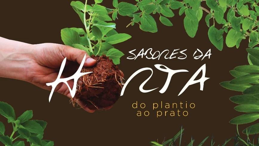 Livro gratuito e online ensina a plantar temperos em casa e sugere receitas