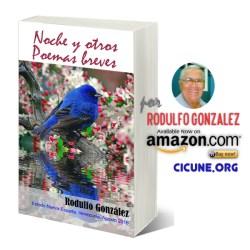 Noche y Otros Poemas Breves por Rodulfo Gonzalez
