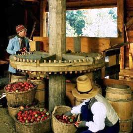 Cider-milling in the 1830s