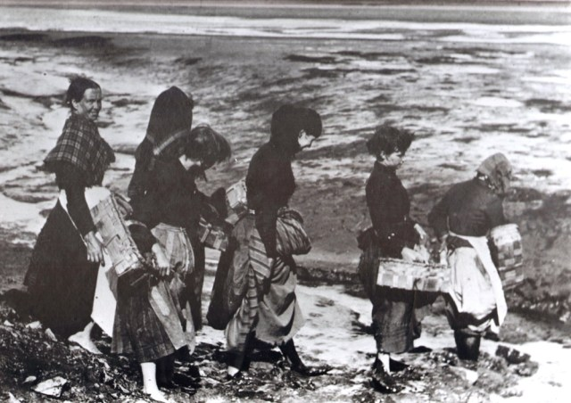 Searching for seashells, courtesy Museum of Hartlepool