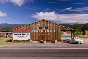 The_Apple_Shed_0002