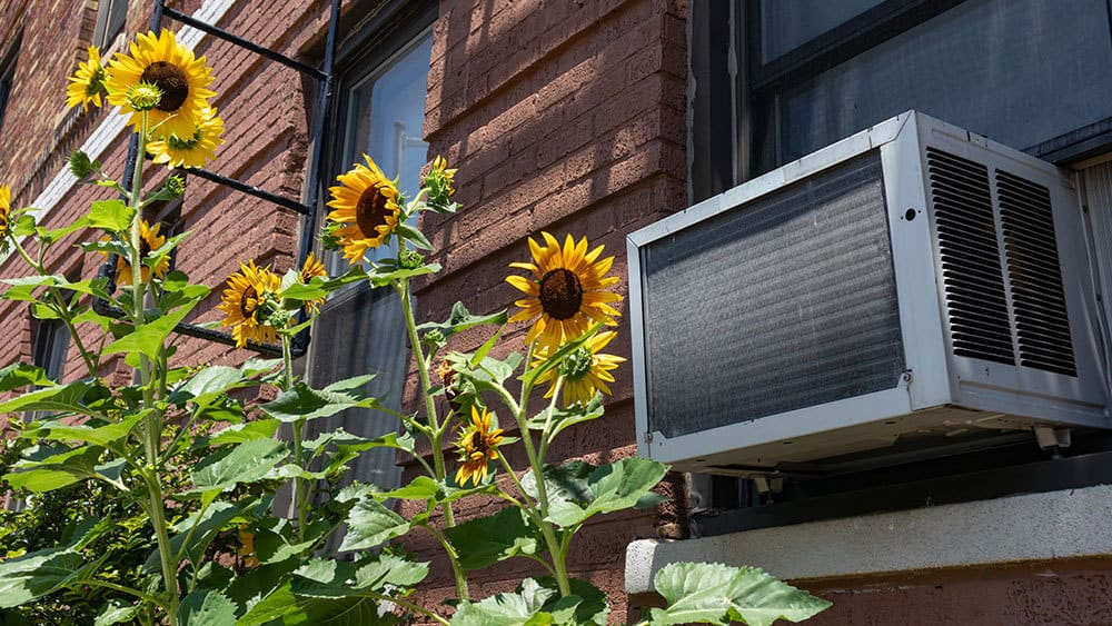Considerations to look for after removing air conditioner.