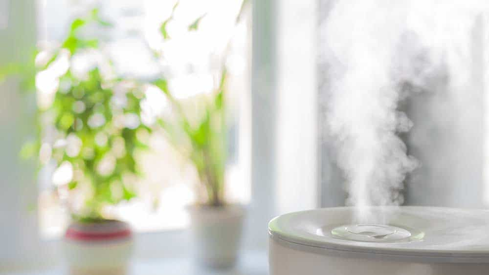 Humidifier placed on the table.