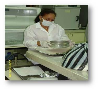 ciencia de cuba_ciencia cubana_Desarrollo tecnológico de tabletas masticables de Lecitina de soya