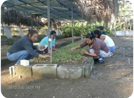ciencia de cuba_ciencia cubana_Programa Producción Sostenible Alimentos en Santiago de cuba_2
