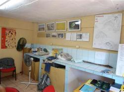 ciencia de cuba_ciencia cubana_anillamiento de aves en cuba_estación ecológica siboney juticí (11)