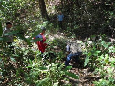 ciencia de cuba_portal de la ciencia cubana_protección de especies cinegéticas (57)