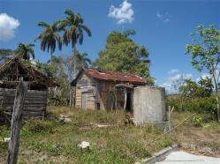 ciencia de cuba_portal de la ciencia cubana_protección de especies cinegéticas (63)