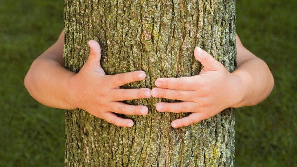 Tu e a natureza são grandes amigos?