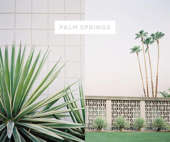 Palm Springs Photo by Jose Villa
