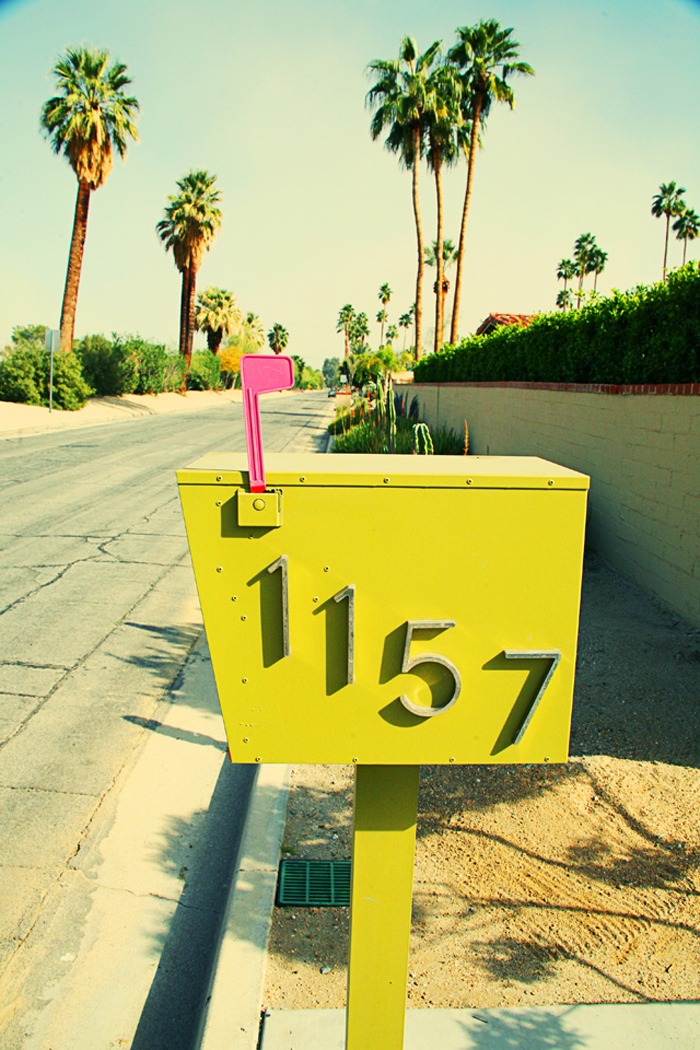 Palm Springs Mailbox by Jessie Webster