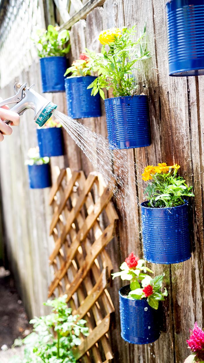 Watering Backyard Tin Can Fence Garden