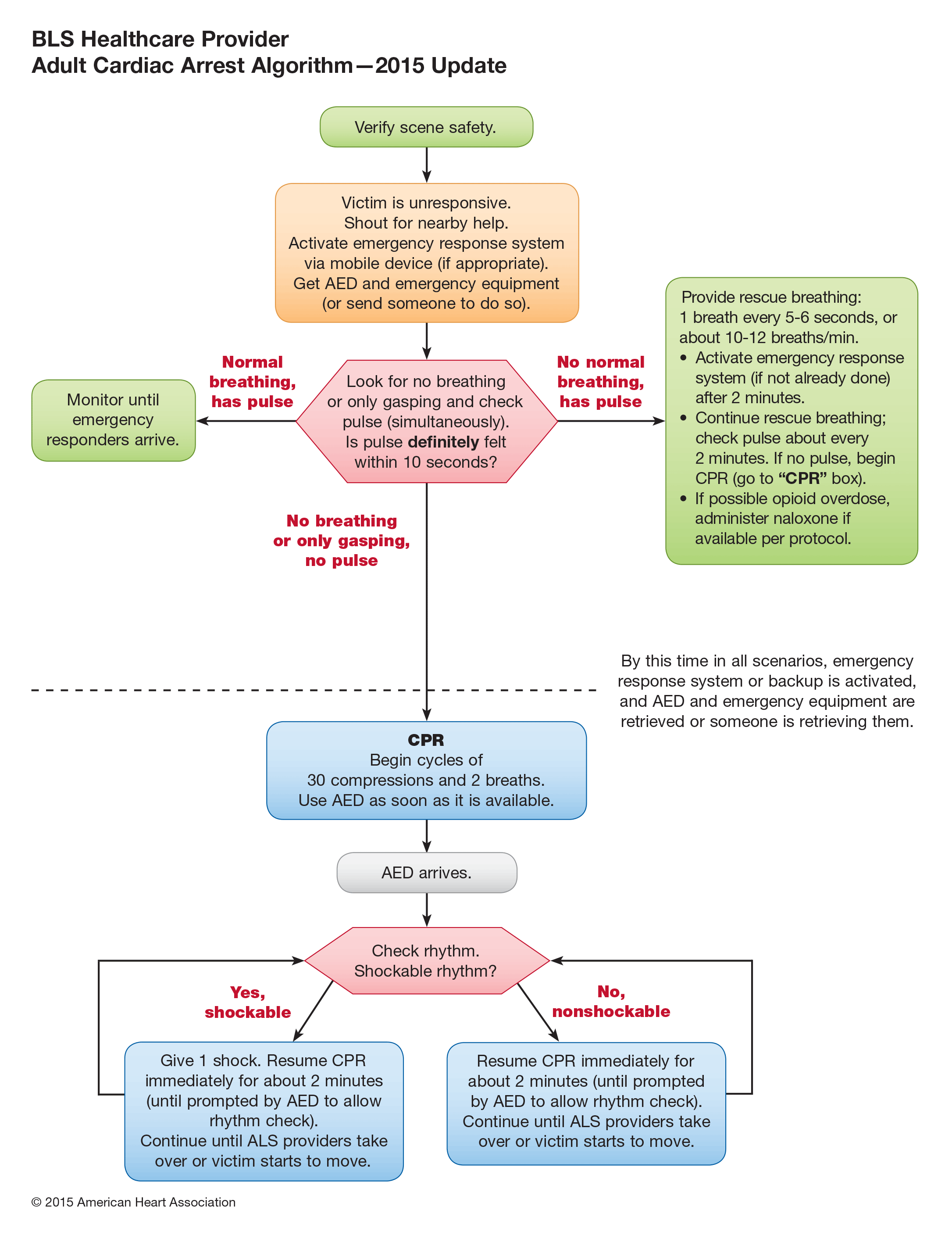 Bls For Hcp