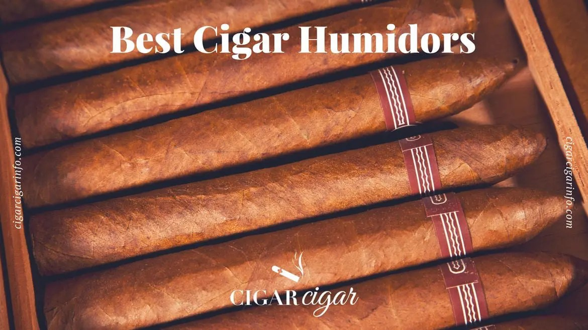 Best Humidor For Preserving Cigars 2018 A Complete