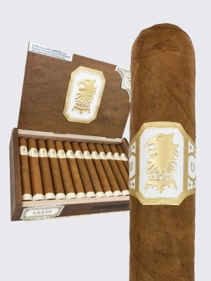 Undercrown Shade image.