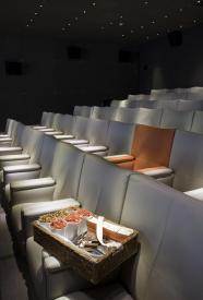 Cinéma - Royal Monceau